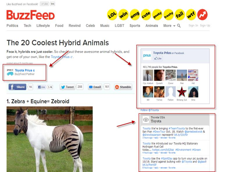 Buzz feed toyota zebroid pic